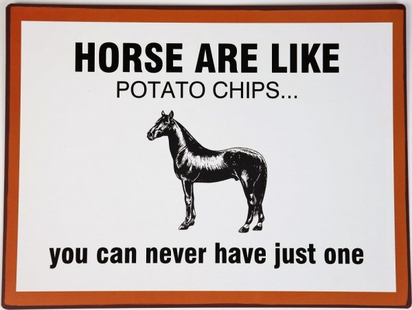 Lafinesse Metal Schild - Horses are Like Potato Chips...
